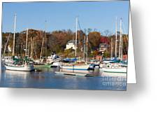 Sailboats In Camden Harbor I Greeting Card