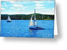 Sailboats In The Summer Greeting Card