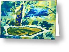 Sailboats On Charles River Greeting Card by Alexandra Jordankova