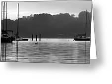 Sailboats Greeting Card