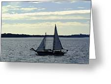 Sailin Greeting Card