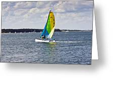 Sailing Along Greeting Card