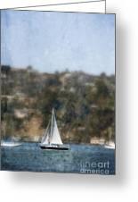 Sailing Along The Shore Greeting Card
