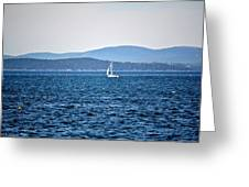 Sailing Amidst The Buoys Greeting Card