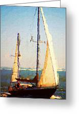 Sailing At Daytona Greeting Card