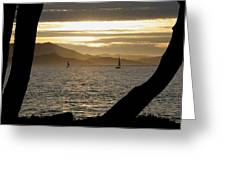 Sailing At Sunset On The Bay Greeting Card