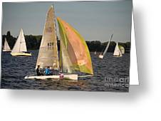 Sailing Dinghy At Stralsund Regatta Germany Greeting Card by David Davies
