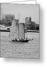 Sailing Free In Black And White Greeting Card