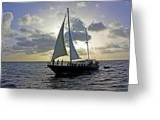Sailing In Aruba Greeting Card