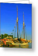 Sailing In Maine Greeting Card