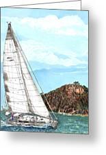 Bay Of Islands Sailing Sailing Greeting Card