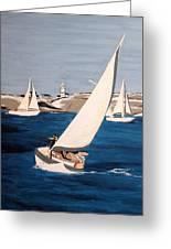 Sailing On San Francisco Bay Greeting Card