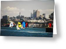 Sailing On The Bay Greeting Card
