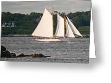 Sailing Portland Greeting Card