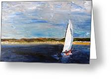 Sailing Provincetown Waters Greeting Card