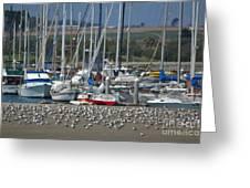 Sailing Sailing Greeting Card