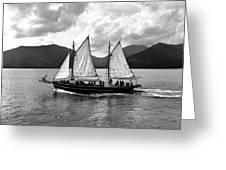 Sailing Ship Black And White Greeting Card