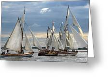 Sailing The Limfjord Greeting Card