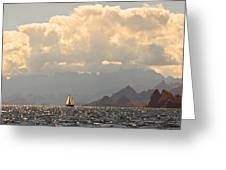 Sailing The Sea Of Cortez Greeting Card