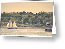 Sailing The Shoreline Greeting Card