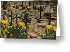 Saint Dominic Cemetery At Old D'hanis Texas Greeting Card