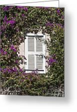 Saint Tropez Window Greeting Card
