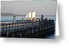 Salem Willows Sailboat Greeting Card