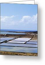 Salinas De Janubio On Lanzarote Greeting Card