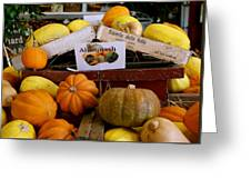 San Joaquin Valley Squash Display Greeting Card
