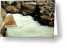 Salmon Fishing Platforms Greeting Card by Mamie Gunning