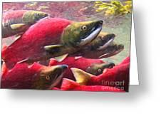 Salmon Run - Painterly Greeting Card