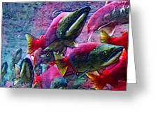 Salmon Run - Square - 2013-0103 Greeting Card