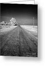 salt and grit covered rural small road in Forget Saskatchewan Canada Greeting Card by Joe Fox
