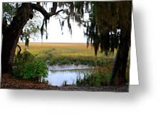 Salt Creek 2 Greeting Card