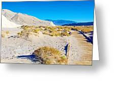 Salt Creek Boardwalk Trail In Death Valley National Park-california  Greeting Card