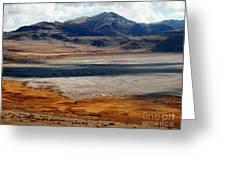 Salt Lake City Antelope Island Greeting Card