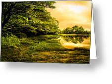 Salt Marsh Kittery Maine Greeting Card