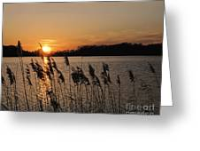 Salt Marsh Sunset Greeting Card