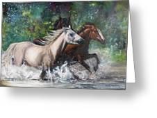 Salt River Horseplay Greeting Card