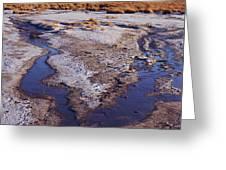 Salt Stream Confluence Greeting Card
