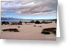 Salton Sea California Greeting Card