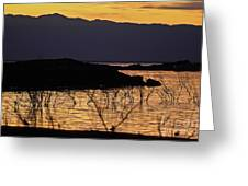 Salton Sea Greeting Card