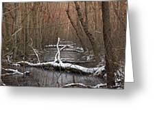 Salty Logs  Greeting Card