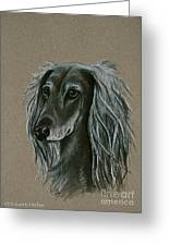 Saluki Greeting Card