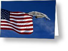 Salute The Flag Greeting Card by Tim Wilson