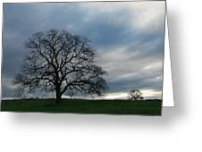 Same Tree Many Skies 10 Greeting Card