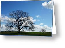 Same Tree Many Skies 11 Greeting Card