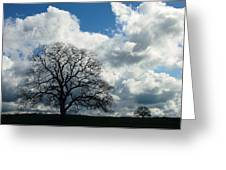 Same Tree Many Skies 13 Greeting Card