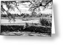 Sampit River View Greeting Card by John Rizzuto