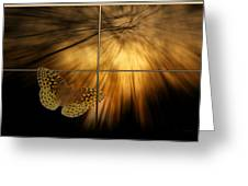 Sample Paneled Following The Light Yellow Butterfly Greeting Card